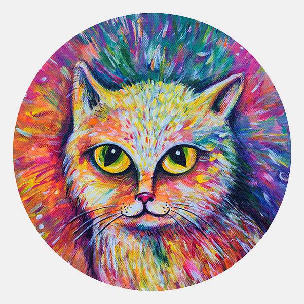 Zasněná kočka